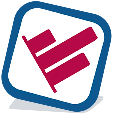 DataInsight Icon